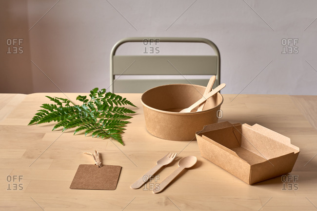 Recyclable carton food package and wooden fork and knife placed on table with fern leaf