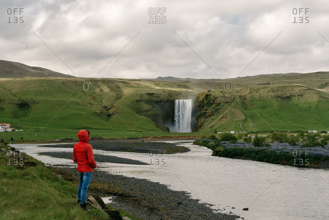 Back view of male tourist in warm clothes standing on green field and enjoying spectacular landscape of waterfall and river in Iceland