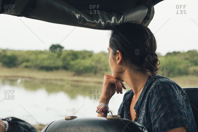 Back view of unrecognizable traveling female sitting in automobile and admiring wonderful view of wildlife park