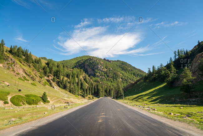 Spectacular view of asphalt roadway surrounded by mountain slopes and evergreen trees on sunny day