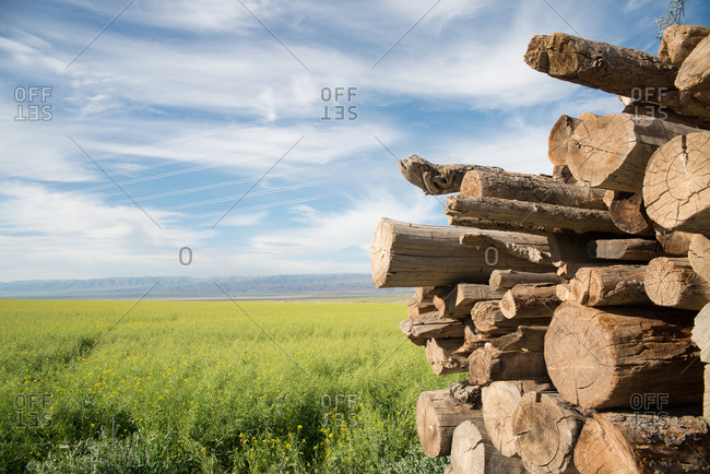 Stack of timber placed on green meadow on background of amazing blue sky