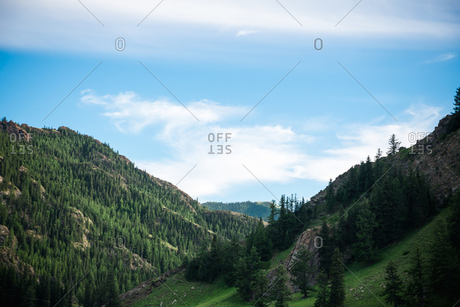 Spectacular aerial view of mountains covered with evergreen forest on background of blue sky