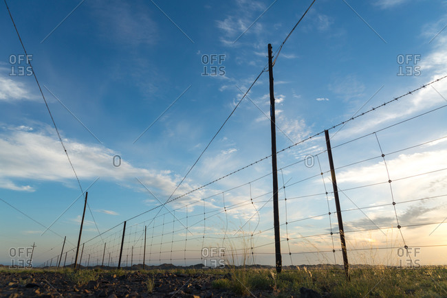 Low angle of electricity cables located in green field on background of magnificent sky