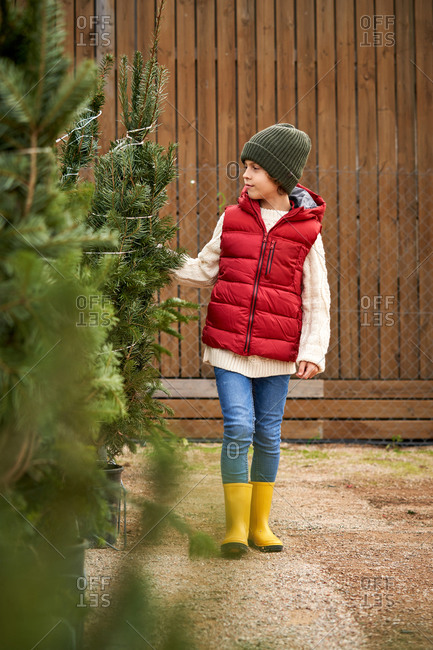 Beautiful blond boy with green wool hat, red vest, white pullover, blue pants and yellow boots choosing his Christmas tree