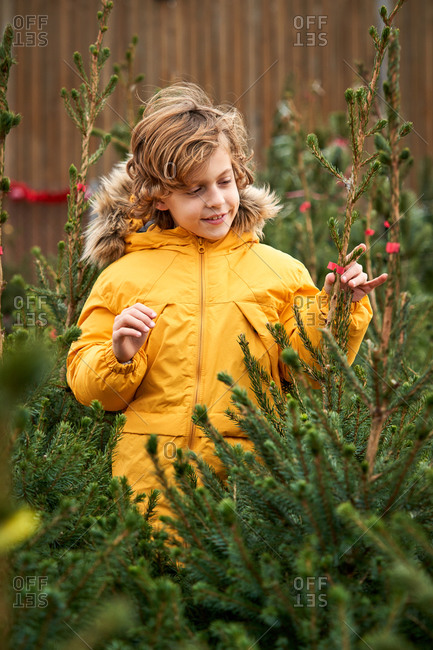 Beautiful blond boy with yellow jacket buying his Christmas tree