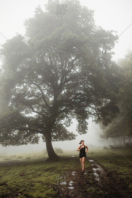 Determined female athlete in sportswear running along wet pathway in foggy wood while training in morning