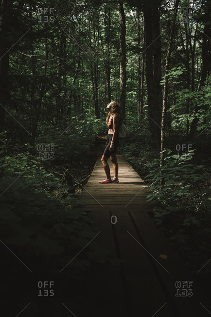 Side view of woman with backpack standing on lumber path and enjoying weather in green forest of La Mauricie National Park in Quebec, Canada