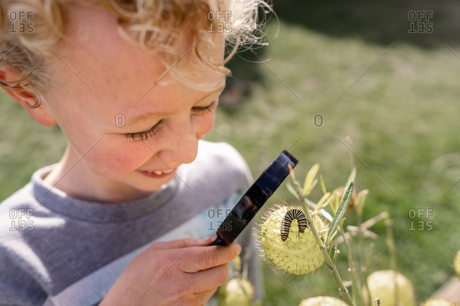 A little blonde boy looking at a caterpillar with a magnifying glass