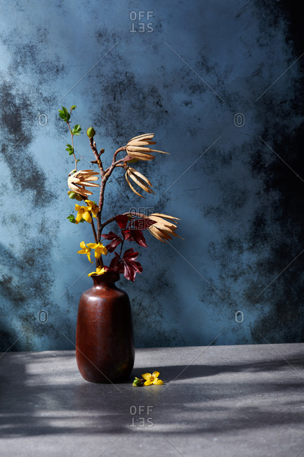 Spring still life of a vase with various spring buds and flowers in dappled afternoon light