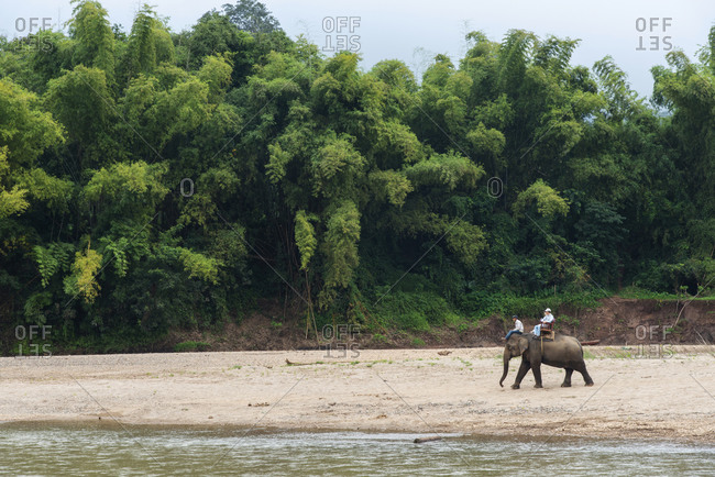 Luang Prabang, Laos - November 29, 2014: Elephant tour strolling along the Nam Khan River near Luang Prabang