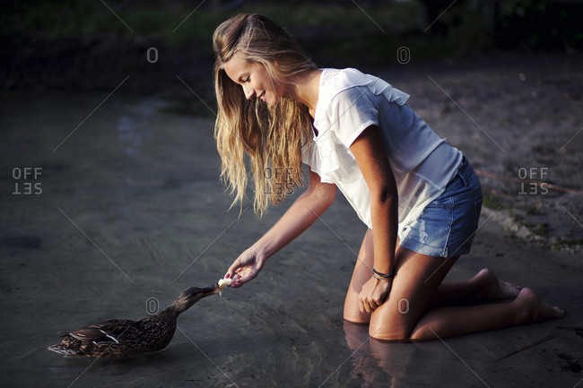 Young woman feeds a duck in the water