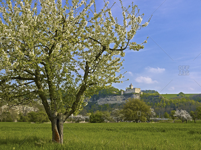 Rudelsburg Castle, Bad Kosen, Saaleck, Saxony-Anhalt, Germany, Europe