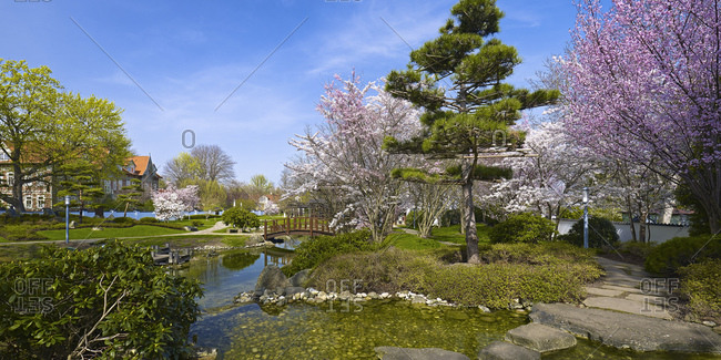 Japanese garden in Bad Langensalza, Thuringia, Germany, Europe