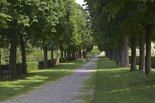 Chestnut avenue from Weikersheim Castle, Main-Tauber-Kreis, Baden-Wurttemberg, Germany