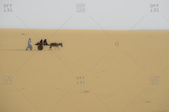 A family rides on a donkey cart through the Sahara desert, Egypt