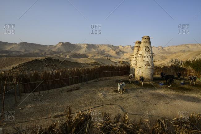 Towers for animal feed storage, Al-Qasr Oasis, Egypt