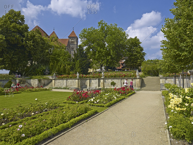 August 8, 2014: Rose garden on the Schlossberg with collegiate church in Quedlinburg, Saxony-Anhalt, Germany