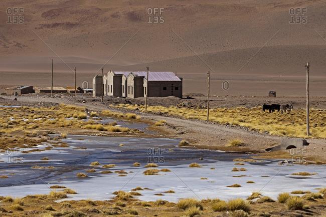 Santa Rosa de los Pastos Grandes, small village in the Puna desert, Salta province, Argentina, South America