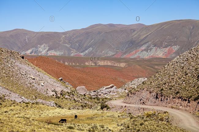 Andean landscape, Puna Desert, Jujuy Province, Argentina, South America
