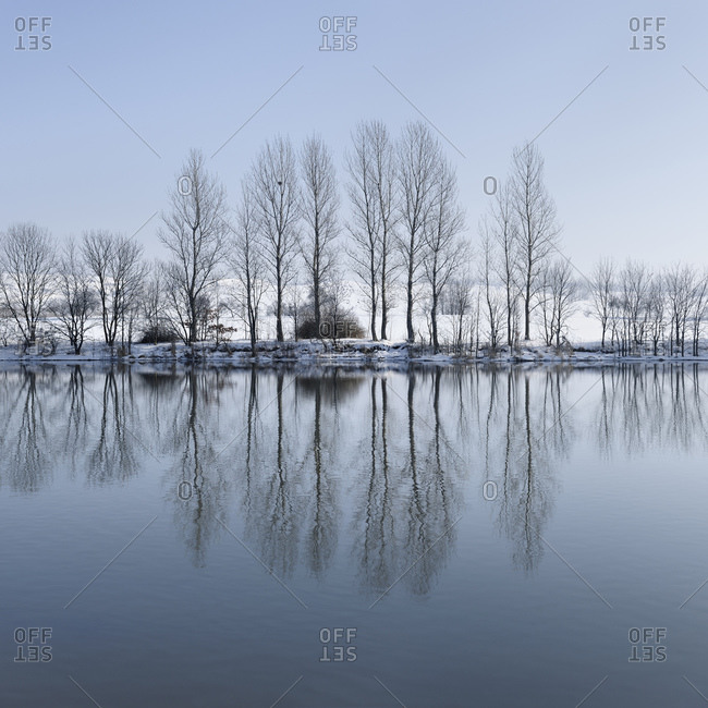 Lonely snowy winter landscape, bare trees are reflected in the water of the Saale, Unteres Saaletal Nature Park, Saalekreis, Saxony-Anhalt, Germany