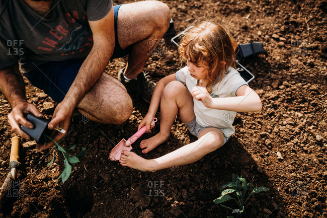 Dad and daughter planting jalapeno plants together