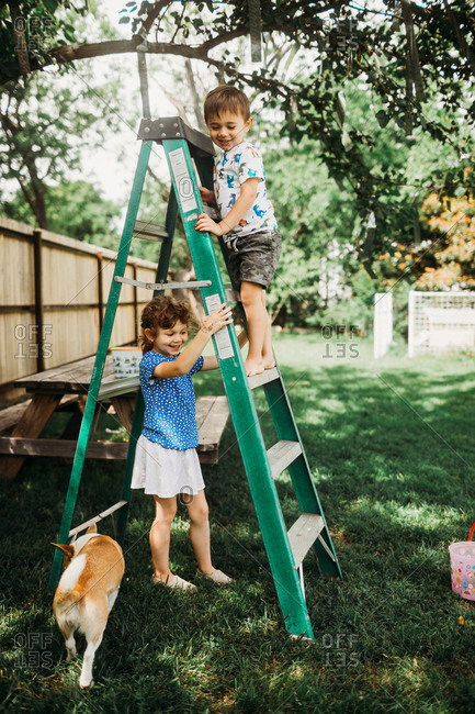 Young brother and sister climbing on ladder in back yard