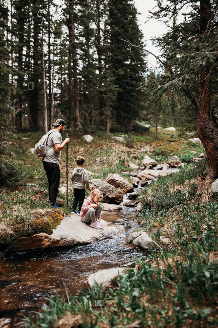 Father and two kids hiking along river in pine forest