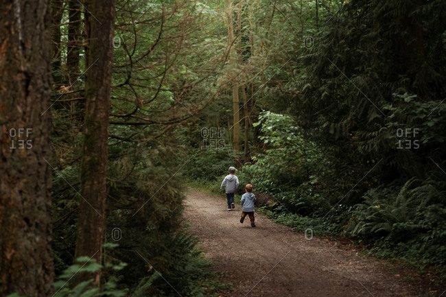 Two boys walking together on rural path