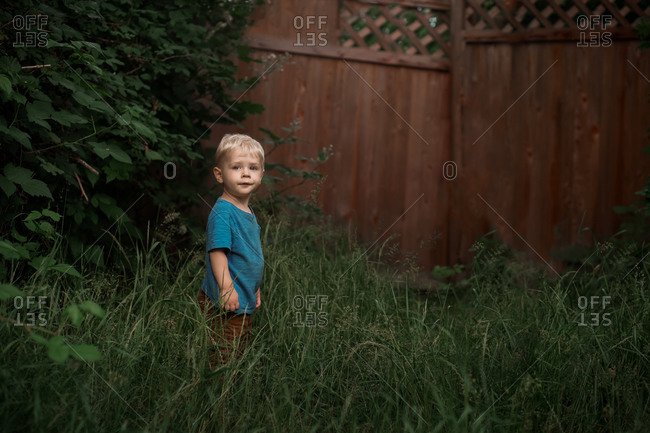 Little boy standing in tell grass in fenced yard