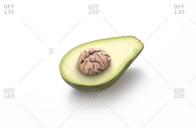 Human brain as avocado pit on a white background with soft shadows, brain food concept