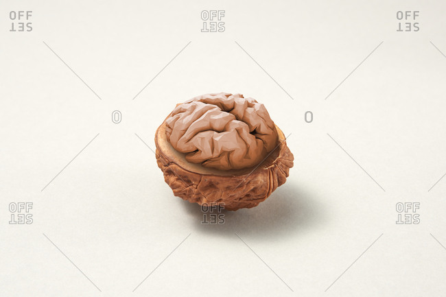 Walnut shell with human brain on a light grey background with soft shadows, brain food concept