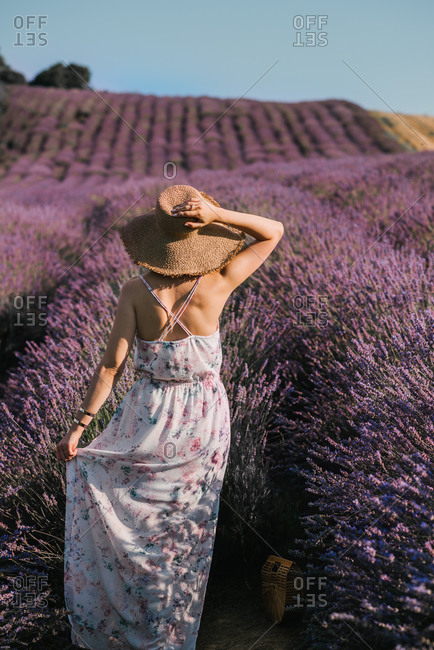 Vertical portrait of a beautiful young woman from behind in a lavender field in floral dress and with straw hat