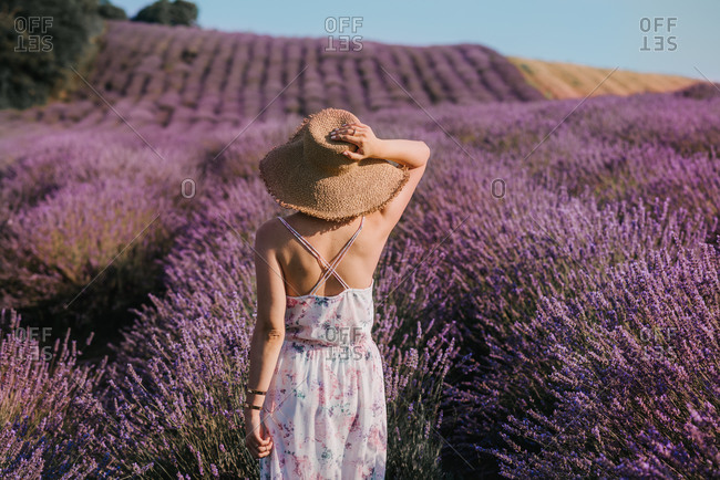 Horizontal portrait of a beautiful young woman from behind in a lavender field in floral dress and with straw hat