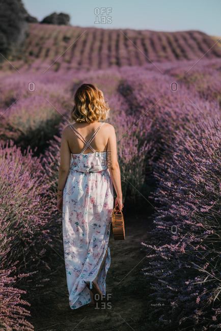 Woman walking through a field of lavender with a floral dress and holding a wooden purse