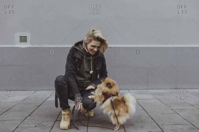 Smiling blond woman crouching while playing with Pomeranian dog against wall