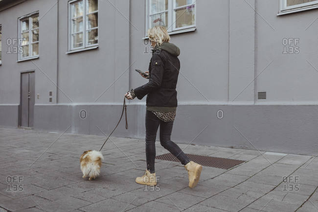 Full length of blond woman walking with Pomeranian on footpath by building in city