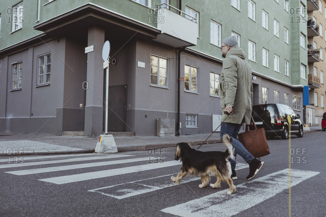 Full length of man crossing street with dog in city