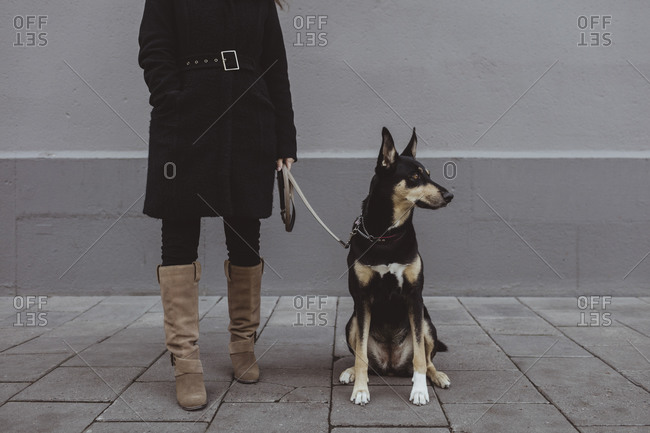 Low section of woman standing with dog on footpath in city