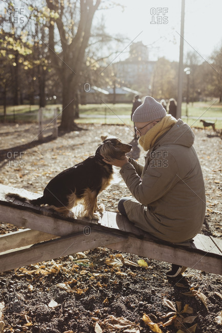 Side view of man bonding with dog while sitting at park during autumn