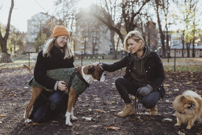 Women crouching while stroking boxer dog at park during autumn