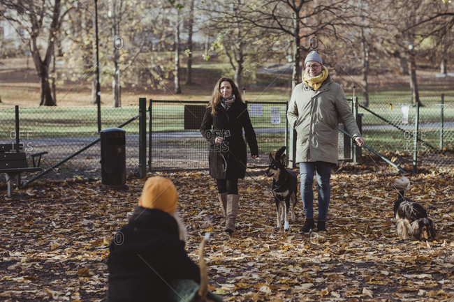 Full length smiling male and female pet owners walking with dogs at park