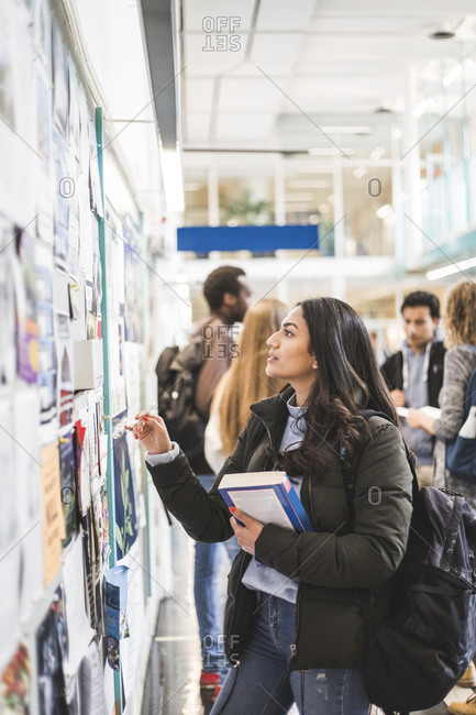Young female student reading posters in university