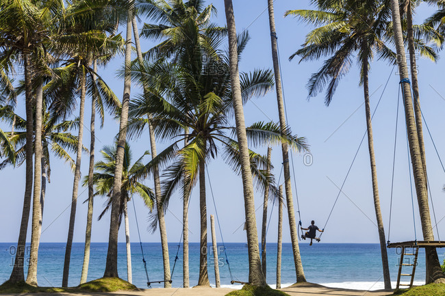 Woman on swing hanging from palm trees, Karangasem, Bali, Indonesia