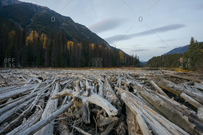 Duffey Lake, Duffey Lake Provincial Park, British Columbia, Canada