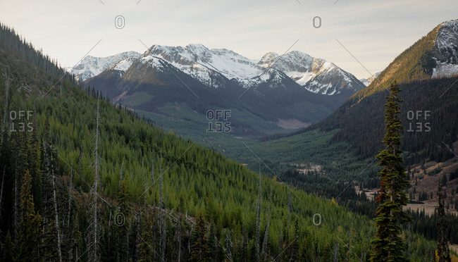 Coast Mountains, Duffey Lake Provincial Park, British Columbia, Canada