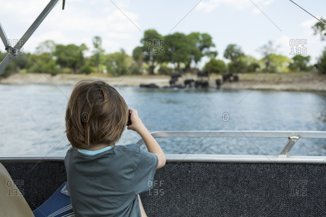 rear view of 5 year old boy taking pictures of elephants at waters edge, Zambezi River
