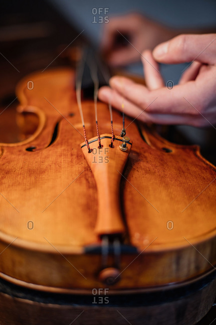 High angle closeup of unrecognizable artisan touching strings and correctly placing while finishing crafting violin in workroom