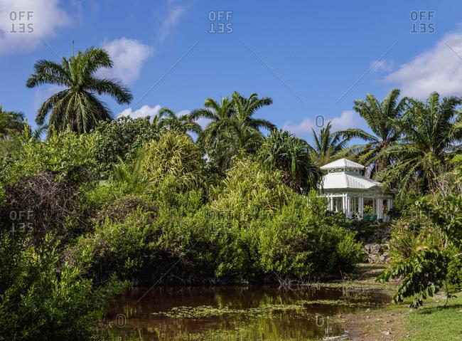 Queen Elizabeth II Botanic Park, North Side, Grand Cayman, Cayman Islands, Caribbean, Central America