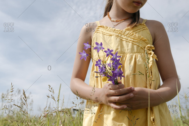 Crop view of girl standing on a meadow holding picked bellflowers