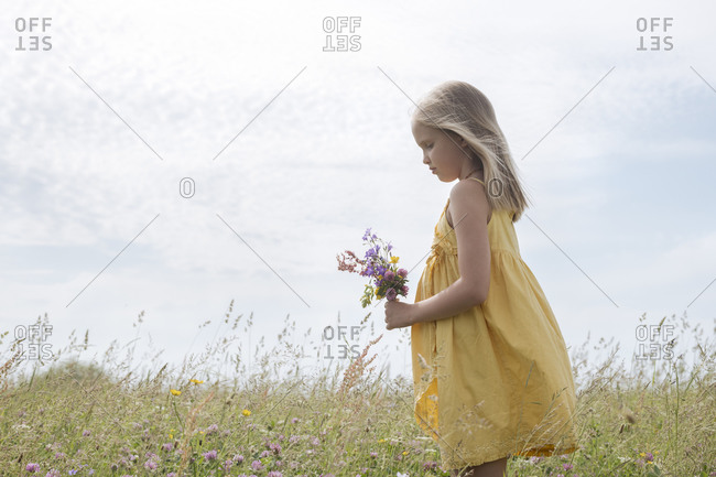 Blond little girl wearing yellow dress standing on a meadow with bouquet of picked field flowers